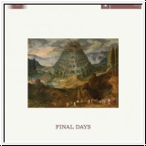 CULT OF YOUTH Final Days CD