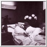 ANTONY AND THE JOHNSONS I Am A Bird Now CD